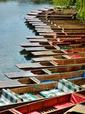 Punting Time Photographic Print by Tim Kahane