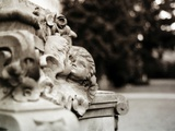 An Ornate Feature on a Statue Photographic Print by Katrin Adam