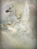 Unicorn Photographic Print by Lynne Davies