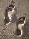 Empreintes de pas Reproduction photographique par Bruno Abarco