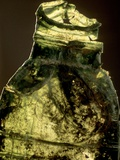 Bottled Out Photographic Print by Bernard Jaubert