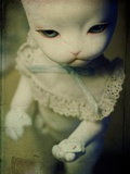A Doll with a Cats Face Holding a Small Heart in Her Paw Photographic Print by Kimberley Ross