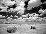 A Hayfield with Summer Clouds Photographic Print by Rip Smith