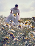 A Woman in a White Victorian Dress, Walking Among Camomile Flowers on a Meadow on a Sunny Day Photographic Print by Malgorzata Maj