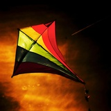 Kite Photographic Print by Mark James Gaylard
