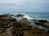 The Rugged Shore Photographic Print by Sharon Wish