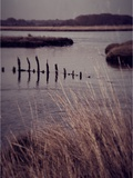 The Last Tide Photographic Print by Tim Kahane