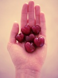 Handful of Heart-Shaped Cherries Photographic Print by Jena Ardell