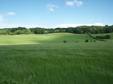 Green Fields in England Photographic Print by Tim Kahane