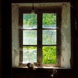 Broken Window Photographic Print by Bernard Jaubert