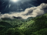 El Yunque National Park Photographic Print by Andrea Costantini