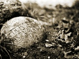 An Inscribed Stone in the Ground Photographic Print by Katrin Adam
