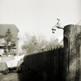 An Outside Tap Fixed to a Post Photographic Print by Katrin Adam