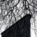 Flat Iron Building, Manhattan, New York City Photographic Print by Sabine Jacobs