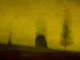 Three Blurred Trees Photographic Print by Susan Bein