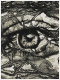 An Eye Photographic Print by Marco Diaz
