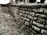 A Low Brick Wall in a Garden Photographic Print by Katrin Adam