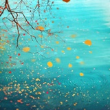 Falling Leaves Photographic Print by Marta Orlowska