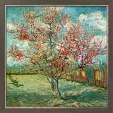 Pêcher En Fleurs (Souvenir De Mauve) Posters by Vincent van Gogh