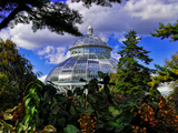 Bronx Botanic Garden, New York City Photographic Print by Sabine Jacobs