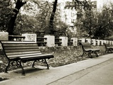 Park Benches Photographic Print by Katrin Adam