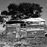 The Shed Photographic Print by Bernard Jaubert