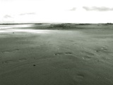 A Wide Expanse of Sand on a Beach Photographic Print by Katrin Adam