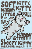 The Big Bang Theory - Soft Kitty Photo