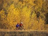 Couple Mountain Biking in Fall Photographic Print