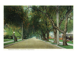Pasadena, California - View Down Marengo Avenue Poster von  Lantern Press
