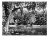 Lantern Press - Deleon Springs, Florida - Scenic View Umění