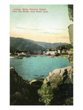 Santa Catalina Island, California - View of City from the Rocks Kunstdrucke von  Lantern Press