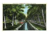 Miami, Florida - W J Matheson Estate Canal Scene at Coconut Grove Poster von  Lantern Press