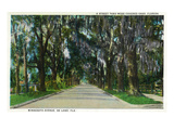 Deland, Florida - View Down Minnesota Avenue Art by Lantern Press