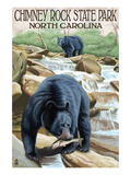 Chimney Rock State Park, NC - Bear Fishing in Stream Poster by Lantern Press