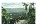 Redlands, California - View from Smiley Heights Art by Lantern Press 