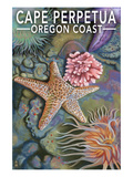 Cape Perpetua Tidepools - Oregon Coast Posters by  Lantern Press