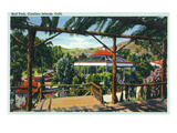 Santa Catalina Island, California - View of Bird Park Prints by Lantern Press