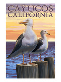 Cayucos, California - Sea Gulls Prints by  Lantern Press