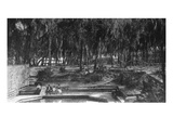 Green Cove Springs, Florida - View of the Spring Prints by  Lantern Press
