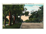 Pasadena, California - Millionaire Row, Orange Grove Avenue Prints by  Lantern Press