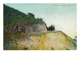 Santa Catalina Island, California - View of a Stagecoach Descending Down a Road Prints by  Lantern Press