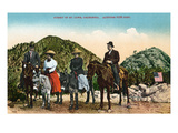 Mt. Lowe, California - View of Hiking Group on Horseback at Summit Prints by  Lantern Press