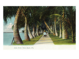 Palm Beach, Florida - Lake Front Scene Poster von  Lantern Press