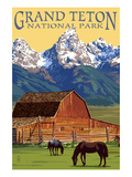 Grand Teton National Park - Barn and Mountains Art by Lantern Press