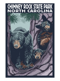 Chimney Rock State Park, NC - Bear and Cubs Print by  Lantern Press