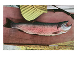 Lake Tahoe, California - Caught Lake Tahoe 5 Pound Trout Print by  Lantern Press
