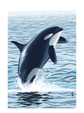 Orca Whale Jumping Prints by  Lantern Press