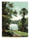 Florida - Tomoka River Scene Near Dayton Prints by  Lantern Press