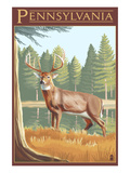 Pennsylvania White Tailed Deer Posters by  Lantern Press